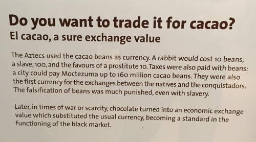 kakaobab-penz-helyett